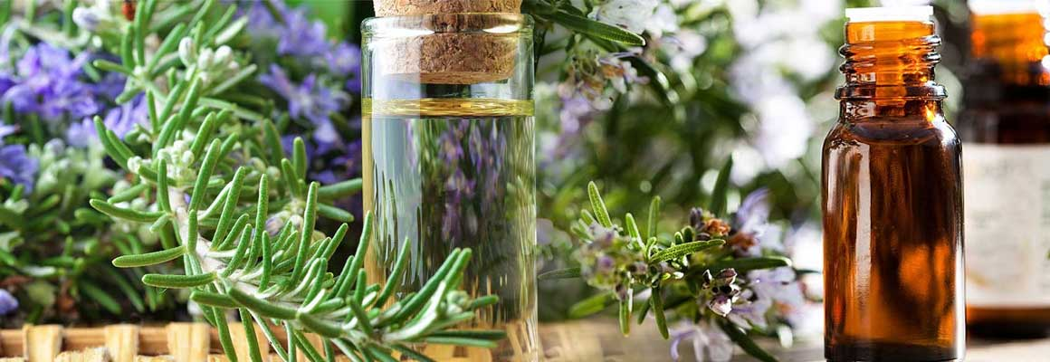 Rosemary Essential Oil Natural Oil