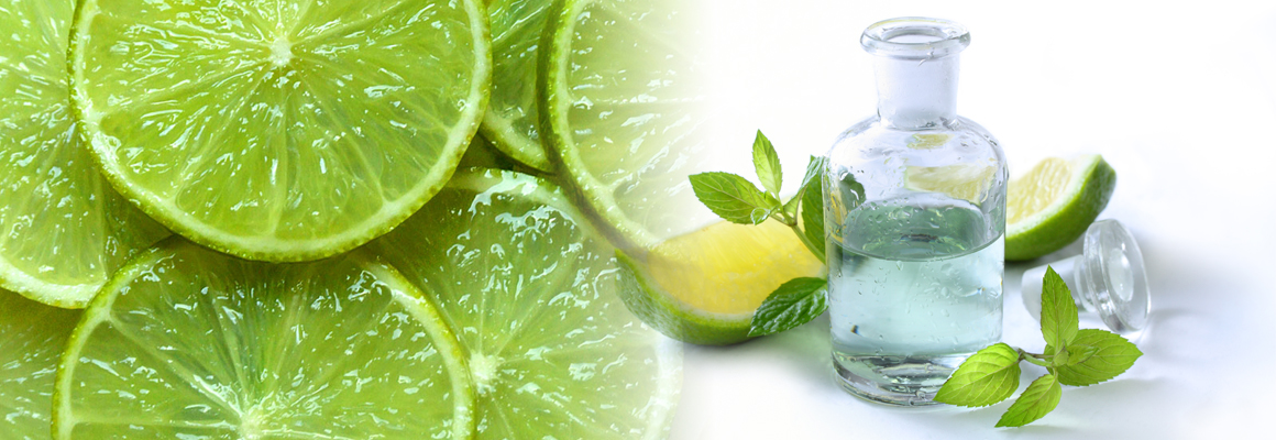 Lime Essential Oil Natural Oil