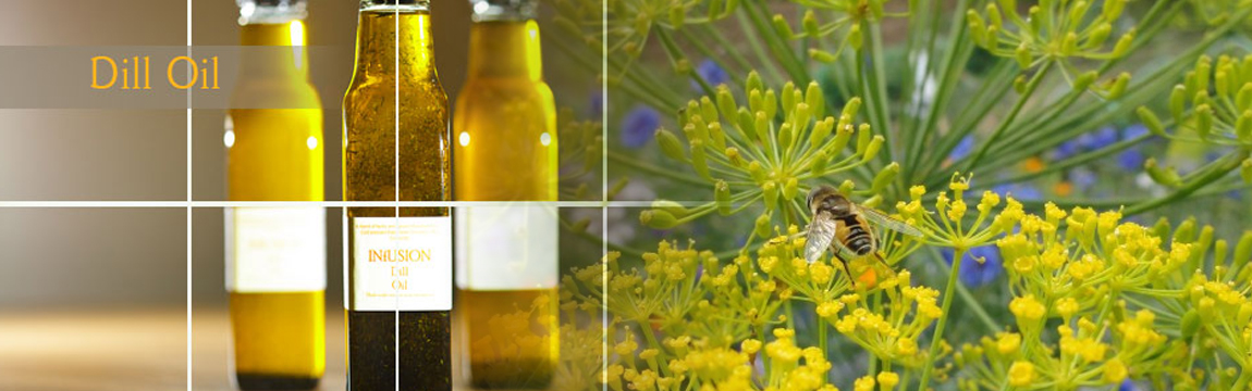 Dill Essential Oil Natural Oil