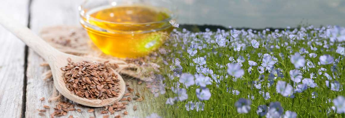 Flax Seed Oil Natural Oil