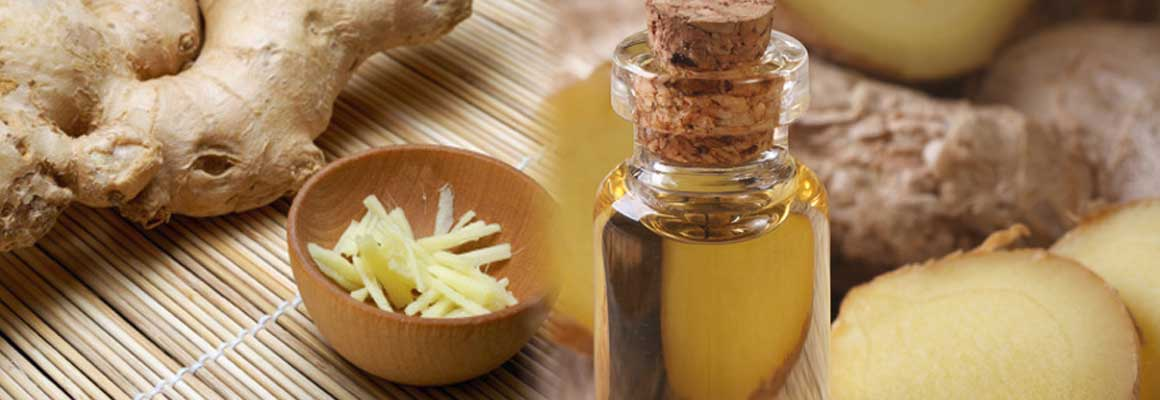 Ginger Essential Oil Natural Oil