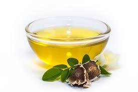 The Power of Moringa Oil Blog