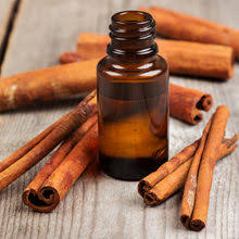 Cinnamon Essential Oil Uses and Benefits Blog