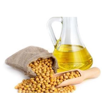 Soybean Seed Oil
